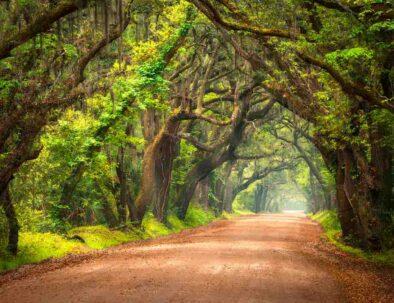 South Carolina Islands