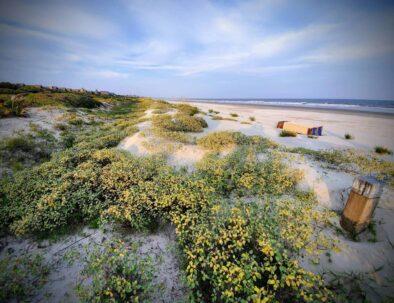 Kiawah Island Dunes
