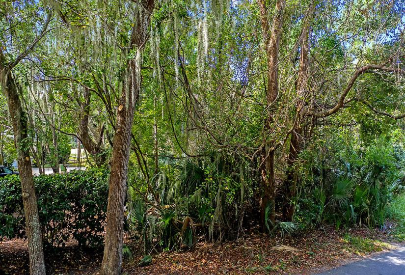 270 Tallow Tree Lane, Kiawah Island, SC 29455, ,Homesites,For Sale,Tallow Tree,20027339