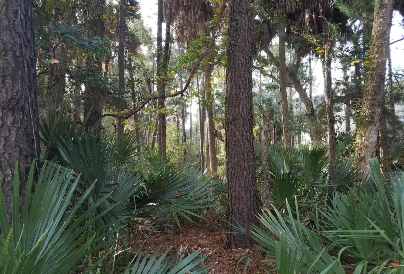 350 Governors Drive, Kiawah Island, SC 29455, ,Homesites,For Sale,Governors,20029768