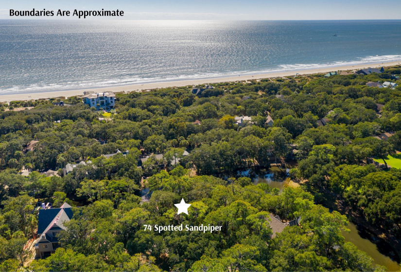 74 Spotted Sandpiper Court, Kiawah Island, SC 29455, ,Homesites,For Sale,Spotted Sandpiper,20030350